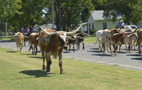 Chisholm Trail Celebrations