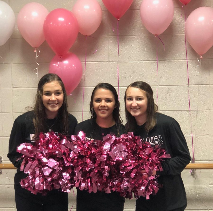 AHS cheerleaders S. Samsel, S. Stout, and K. Taylor